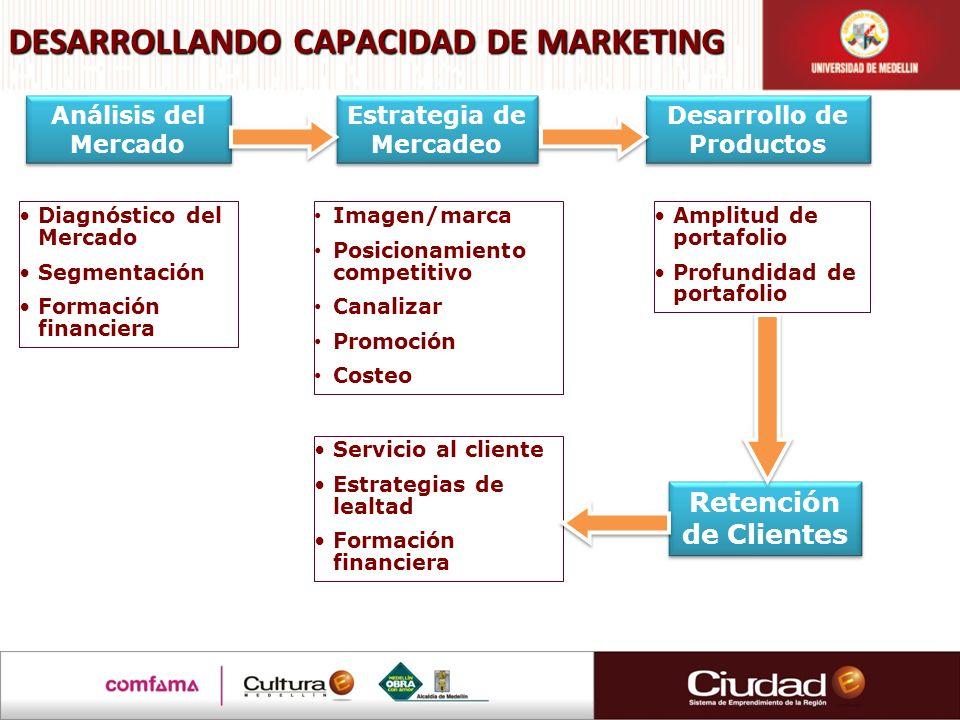 DESARROLLANDO CAPACIDAD DE MARKETING Análisis del Mercado Estrategia de Mercadeo Desarrollo de Productos Retención de Clientes Diagnóstico del Mercado