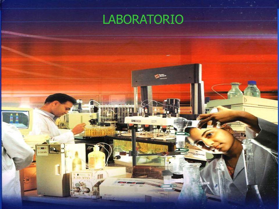 LABORATORIO LABORATORIO LABORATORIO