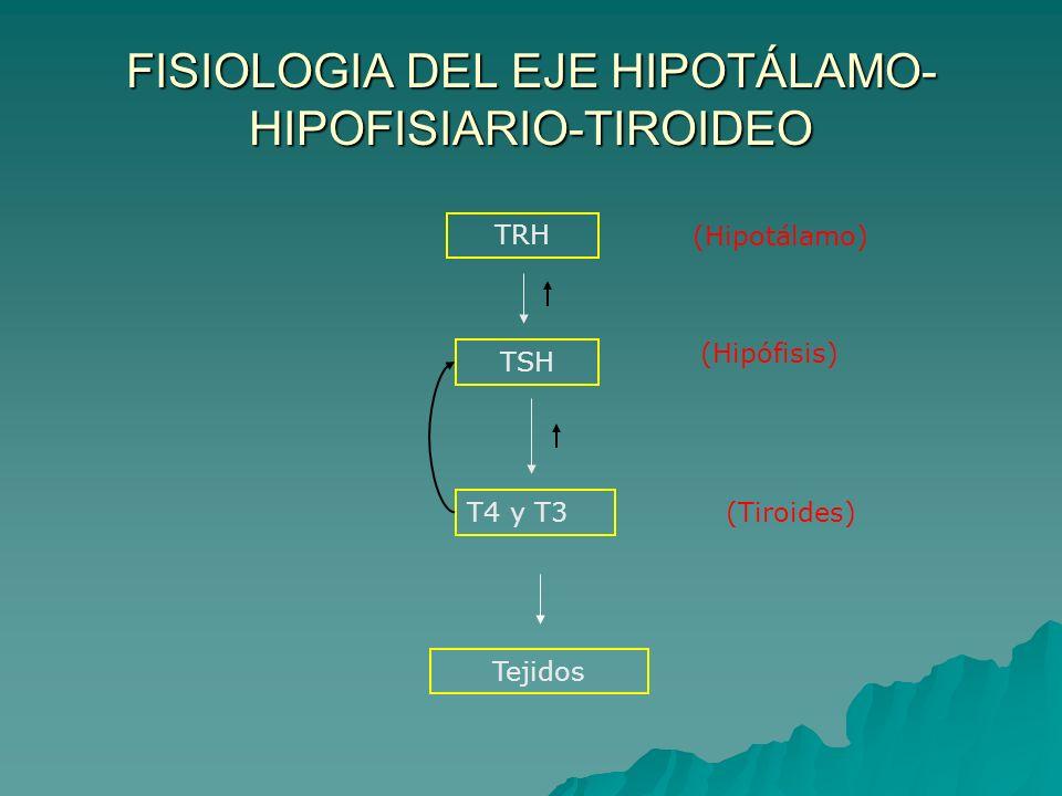 FISIOLOGIA DEL EJE HIPOTÁLAMO- HIPOFISIARIO-TIROIDEO TRH TSH T4 y T3 (Hipotálamo) (Hipófisis) (Tiroides) Tejidos