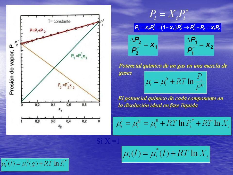 Potencial químico de un gas en una mezcla de gases Si X i =1 El potencial químico de cada componente en la disolución ideal en fase líquida