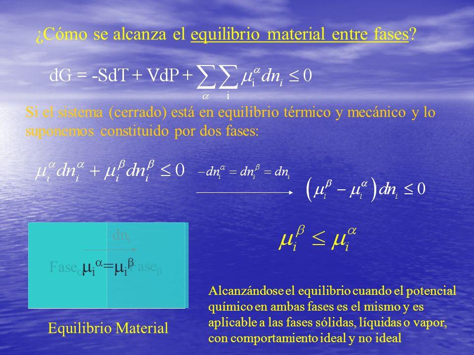 ¿Cómo se alcanza el equilibrio material entre fases? Si el sistema (cerrado) está en equilibrio térmico y mecánico y lo suponemos constituido por dos
