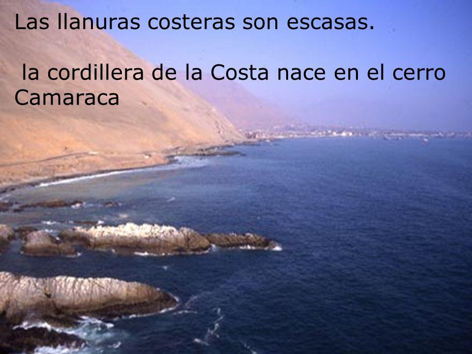 Las llanuras costeras son escasas. la cordillera de la Costa nace en el cerro Camaraca