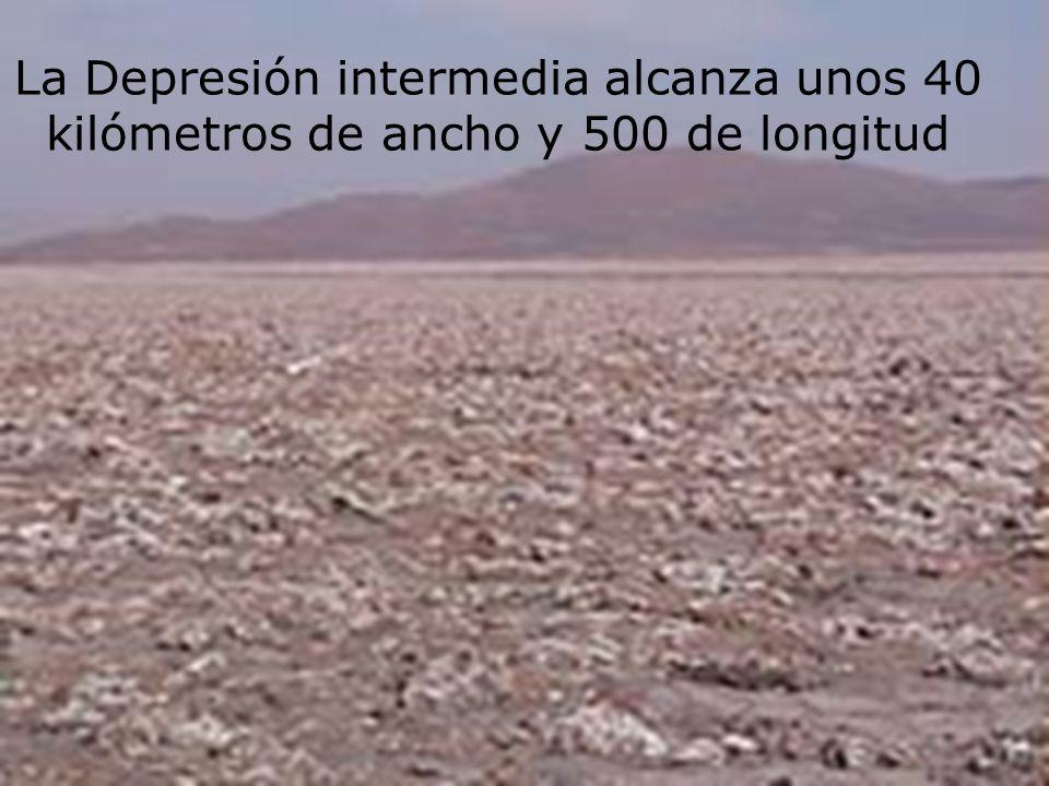 La Depresión intermedia alcanza unos 40 kilómetros de ancho y 500 de longitud