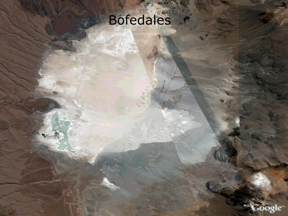 Bofedales