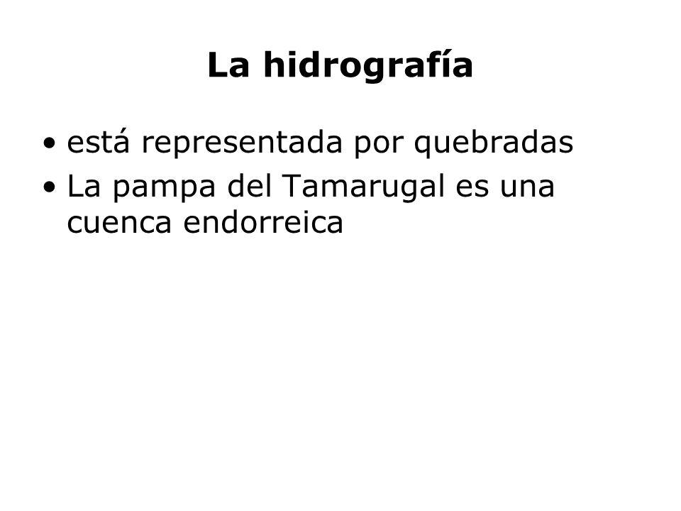 La hidrografía está representada por quebradas La pampa del Tamarugal es una cuenca endorreica