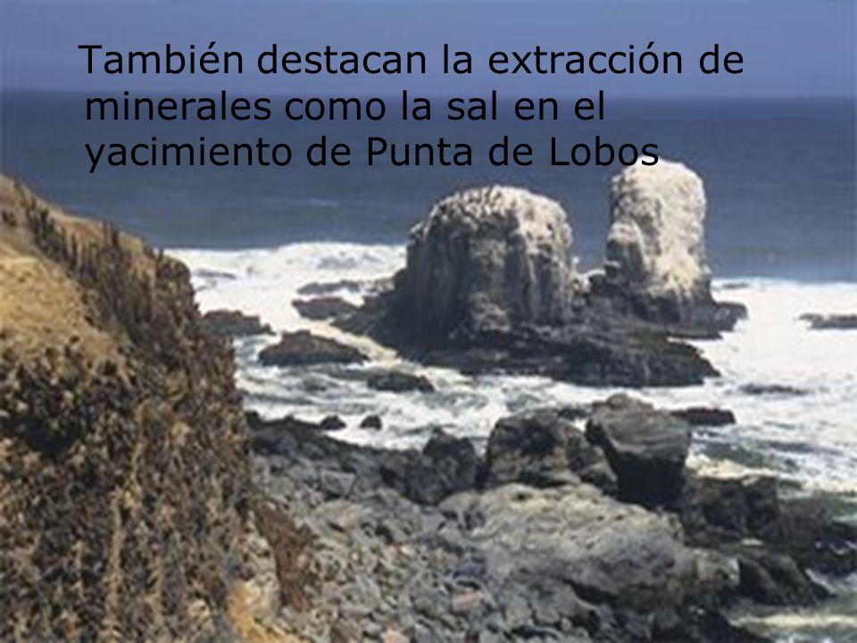 También destacan la extracción de minerales como la sal en el yacimiento de Punta de Lobos