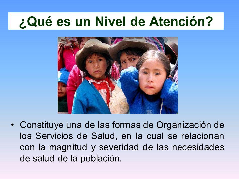 Constituye una de las formas de Organización de los Servicios de Salud, en la cual se relacionan con la magnitud y severidad de las necesidades de sal
