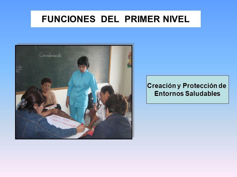 FUNCIONES DEL PRIMER NIVEL Creación y Protección de Entornos Saludables