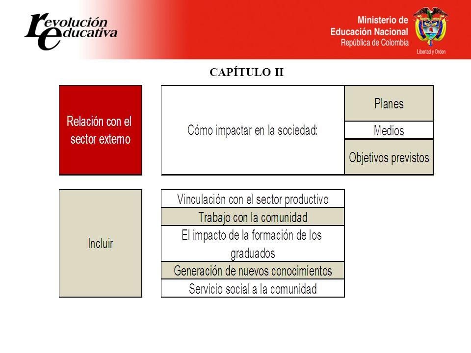 CAPÍTULO III Decreto 1295 de 2010