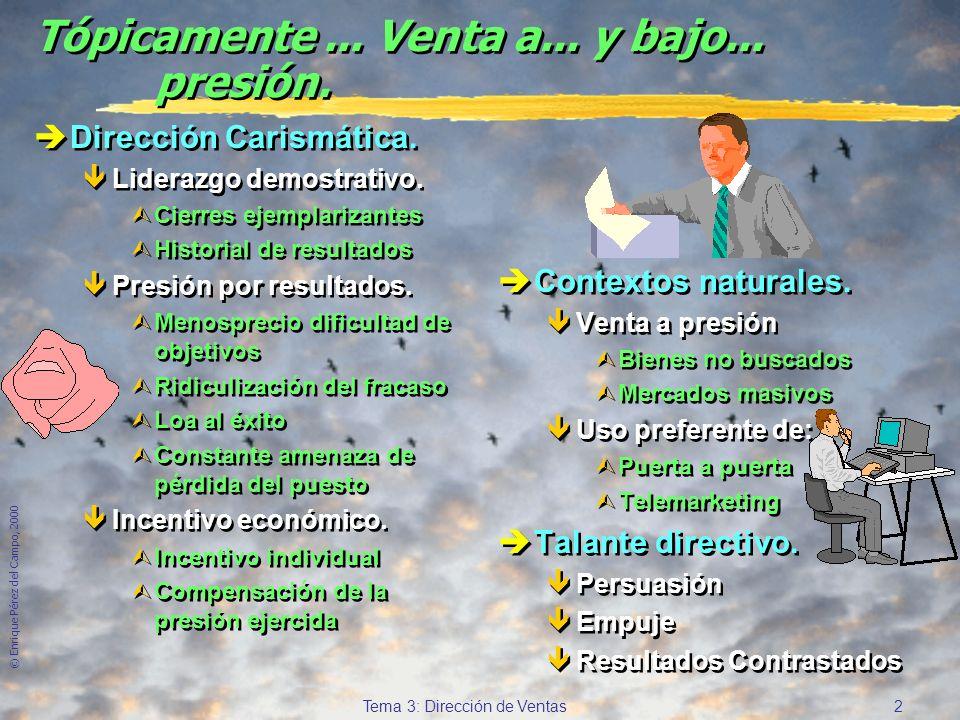 © Enrique Pérez del Campo, 2000 12 Tema 3: Dirección de Ventas Determinantes del rendimiento del vendedor (2) èHabilidad.