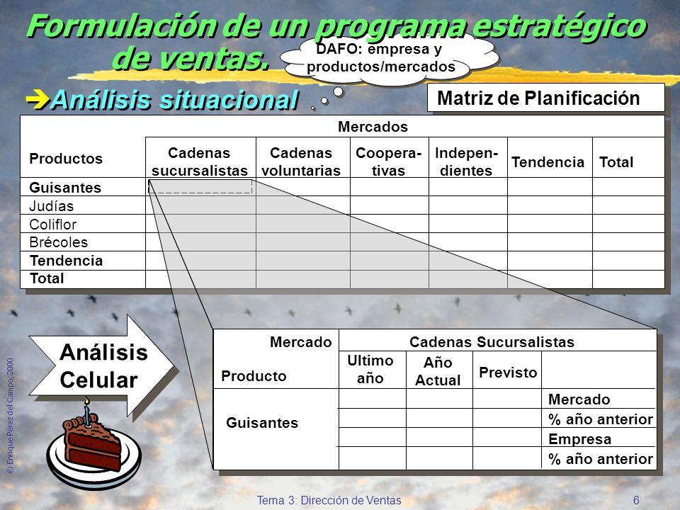 © Enrique Pérez del Campo, 2000 6 Tema 3: Dirección de Ventas DAFO: empresa y productos/mercados DAFO: empresa y productos/mercados Formulación de un programa estratégico de ventas.