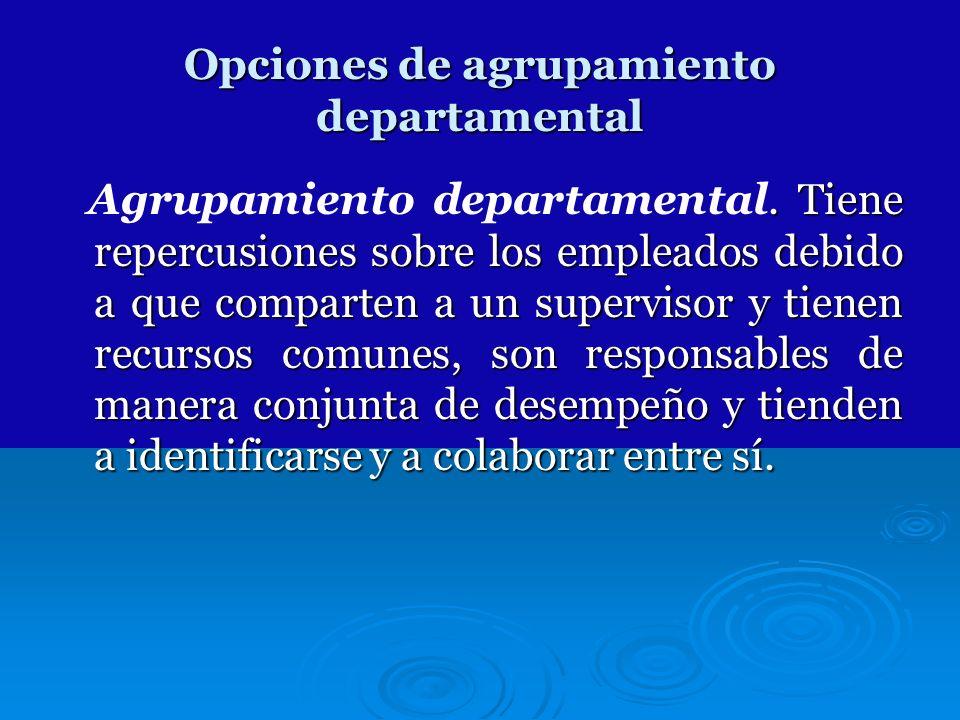 Opciones de agrupamiento departamental. Tiene repercusiones sobre los empleados debido a que comparten a un supervisor y tienen recursos comunes, son