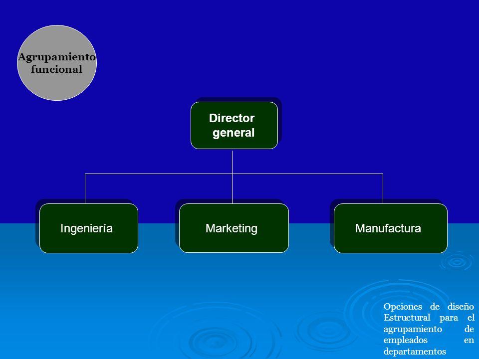 Director general Director general Ingeniería Marketing Manufactura Agrupamiento funcional Opciones de diseño Estructural para el agrupamiento de emple