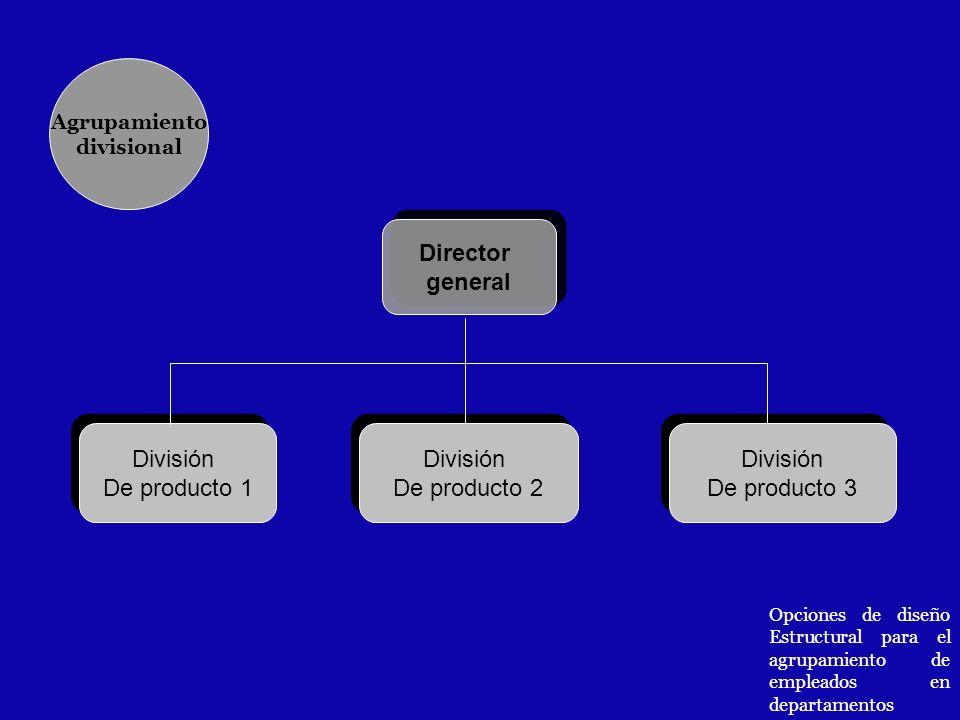 Director general Director general División De producto 1 División De producto 1 División De producto 2 División De producto 2 División De producto 3 D
