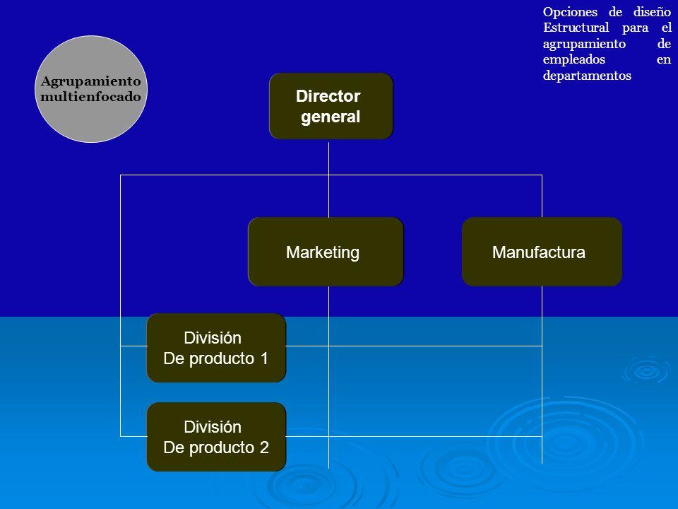 Director general División De producto 1 Marketing Manufactura Agrupamiento multienfocado Opciones de diseño Estructural para el agrupamiento de emplea