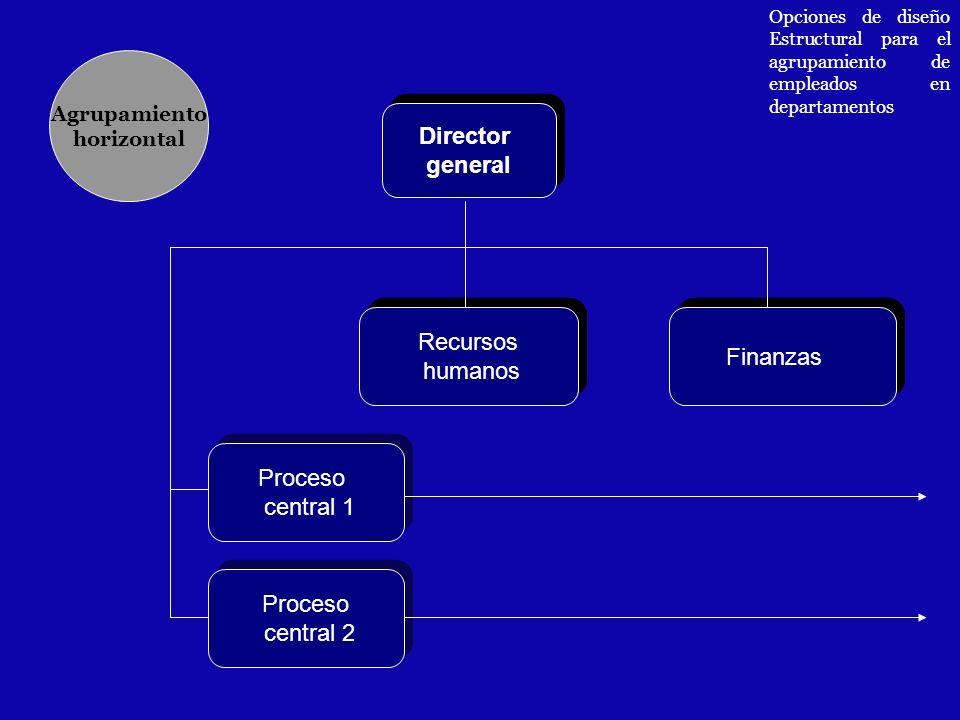 Director general Director general Proceso central 1 Proceso central 1 Recursos humanos Recursos humanos Finanzas Agrupamiento horizontal Opciones de d