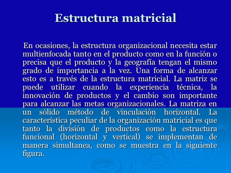 Estructura matricial En ocasiones, la estructura organizacional necesita estar multienfocada tanto en el producto como en la función o precisa que el