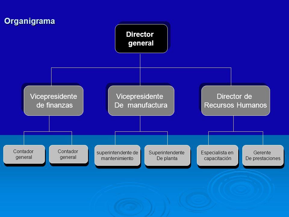 Director general Director general Ingeniería Marketing Manufactura Agrupamiento funcional Opciones de diseño Estructural para el agrupamiento de empleados en departamentos