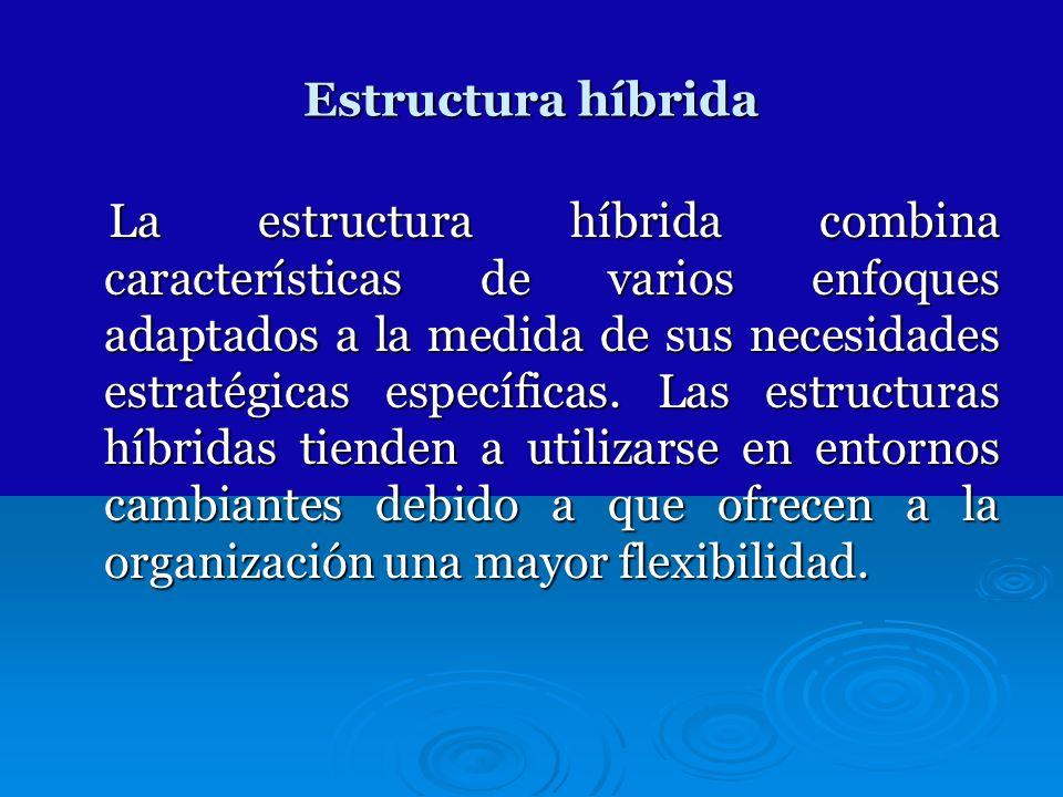 Estructura híbrida La estructura híbrida combina características de varios enfoques adaptados a la medida de sus necesidades estratégicas específicas.