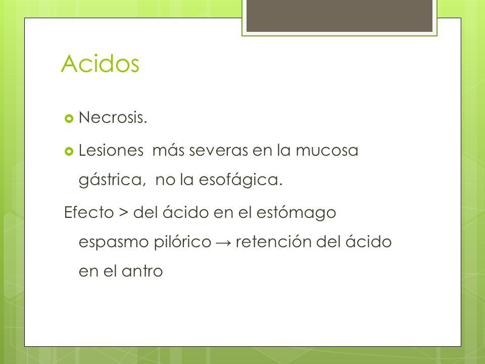 Acidos Necrosis. Lesiones más severas en la mucosa gástrica, no la esofágica. Efecto > del ácido en el estómago espasmo pilórico retención del ácido e