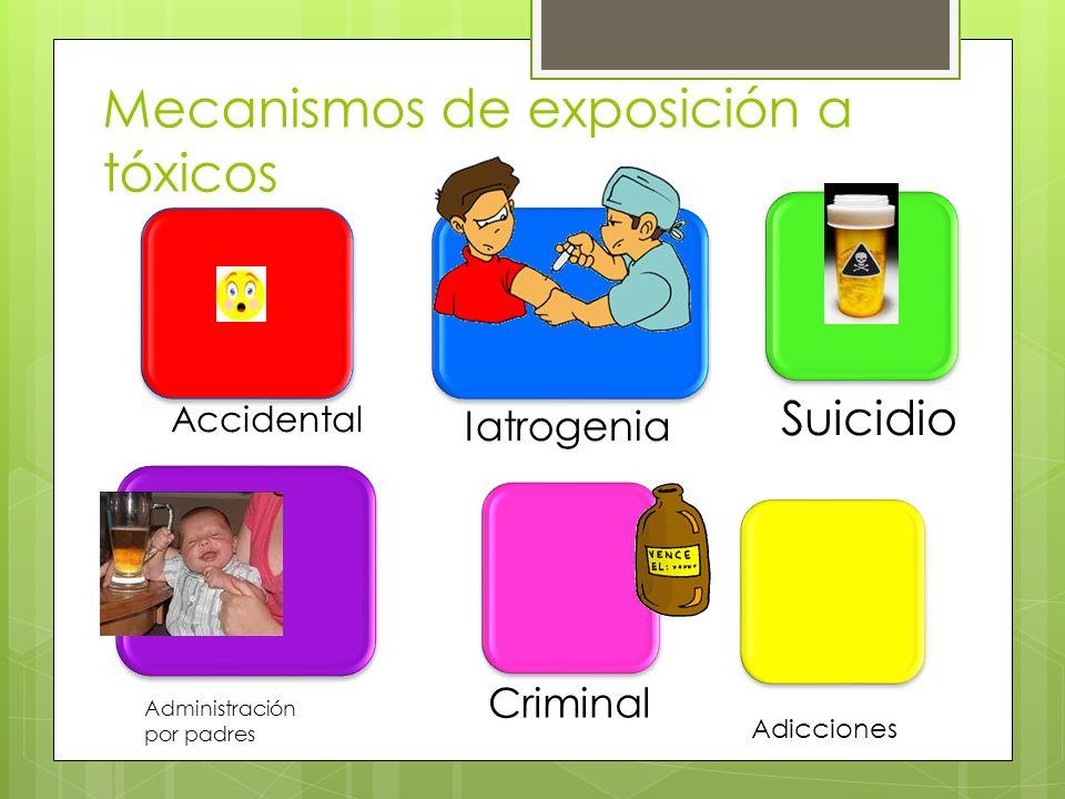 Mecanismos de exposición a tóxicos Accidental Iatrogenia Suicidio Criminal Administración por padres Adicciones
