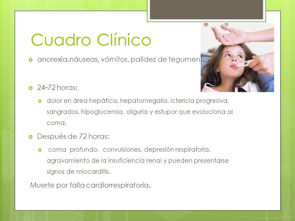 Cuadro Clínico anorexia,náuseas, vómitos, palidez de tegumentos 24-72 horas: dolor en área hepática, hepatomegalia, ictericia progresiva, sangrados, h