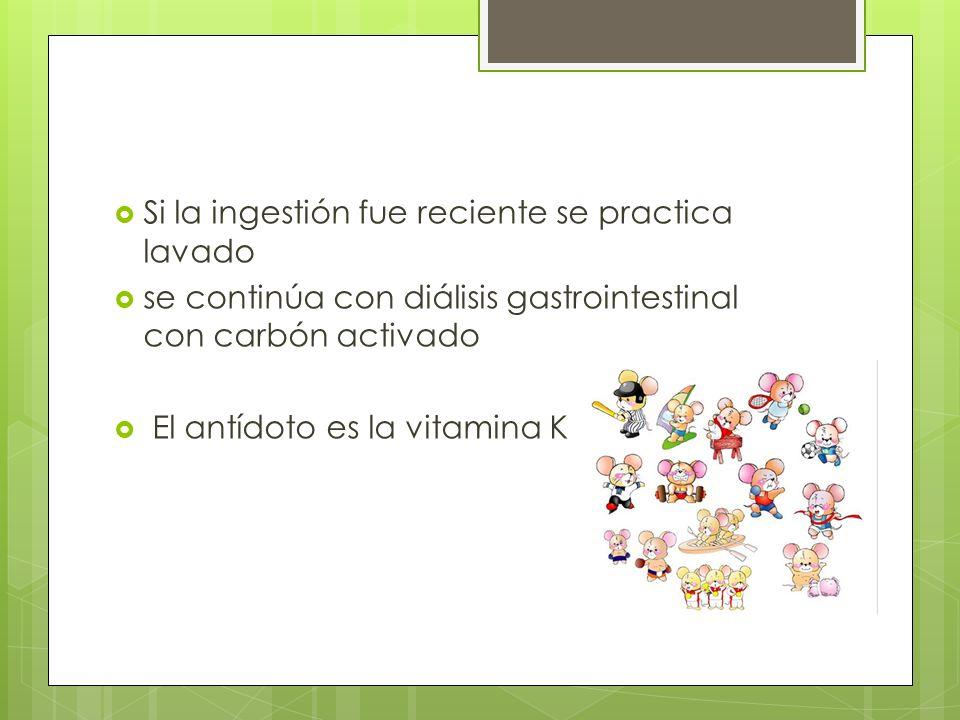 Si la ingestión fue reciente se practica lavado se continúa con diálisis gastrointestinal con carbón activado El antídoto es la vitamina K