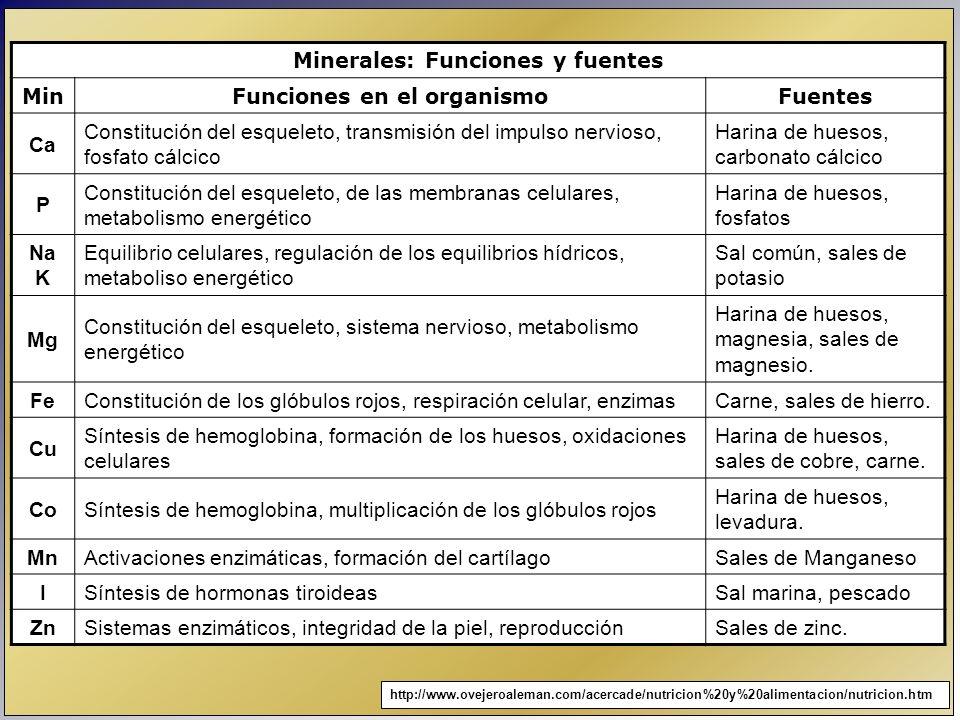 Minerales: Funciones y fuentes MinFunciones en el organismoFuentes Ca Constitución del esqueleto, transmisión del impulso nervioso, fosfato cálcico Ha