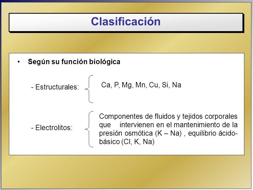 - Estructurales: - Electrolitos: Según su función biológica Ca, P, Mg, Mn, Cu, Si, Na Componentes de fluidos y tejidos corporales que intervienen en e