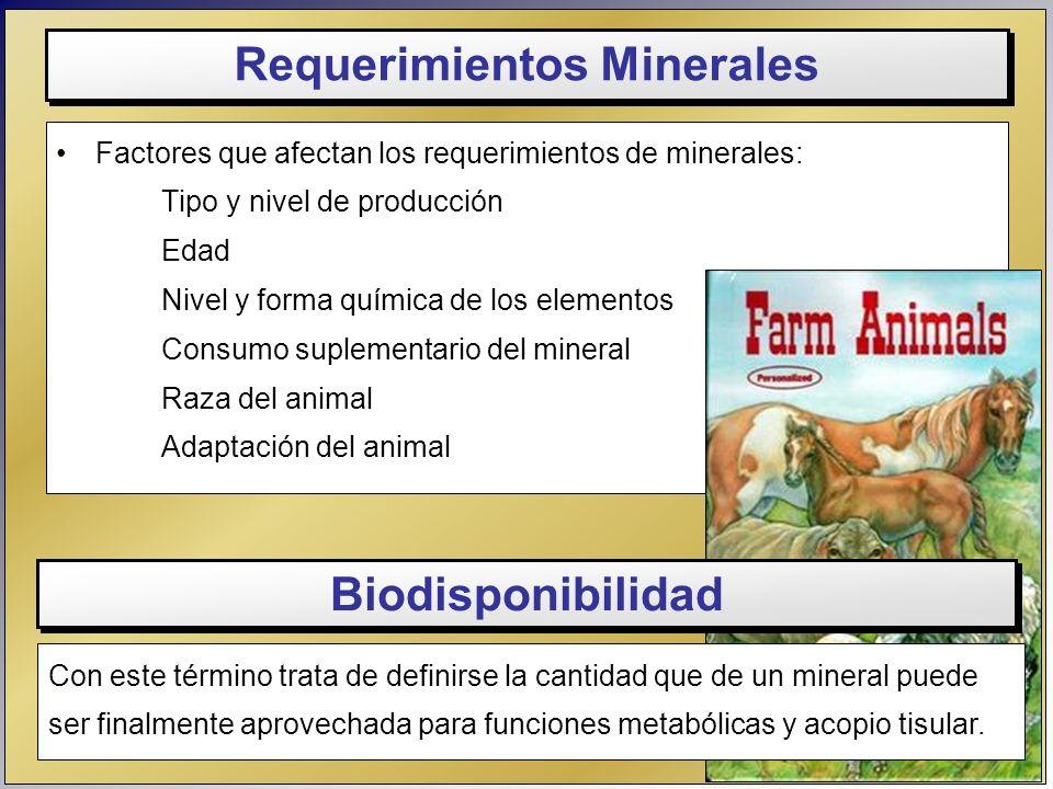 Factores que afectan los requerimientos de minerales: Tipo y nivel de producción Edad Nivel y forma química de los elementos Consumo suplementario del