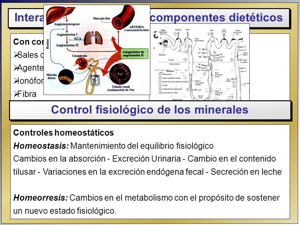 Con compuestos orgánicos Sales de Ca y Mg + ácidos grasos saturados de cadena larga Agentes quelantes Ionóforos Fibra Fetatos Interacciones con otros