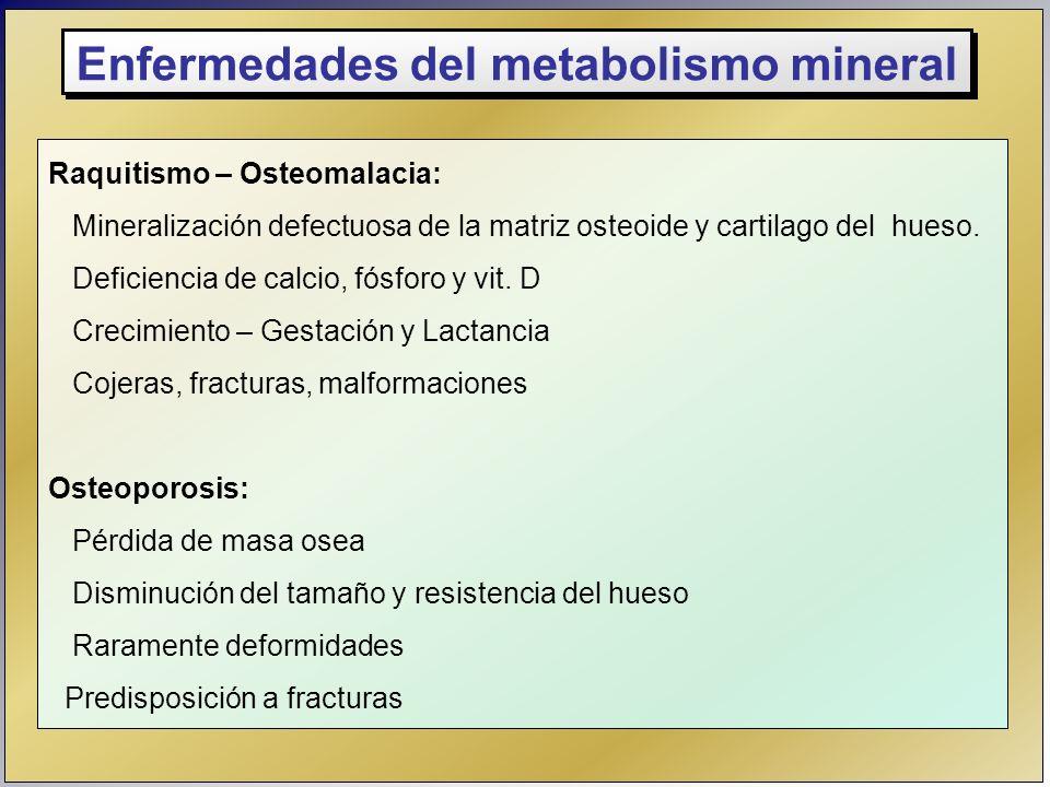 Raquitismo – Osteomalacia: Mineralización defectuosa de la matriz osteoide y cartilago del hueso. Deficiencia de calcio, fósforo y vit. D Crecimiento
