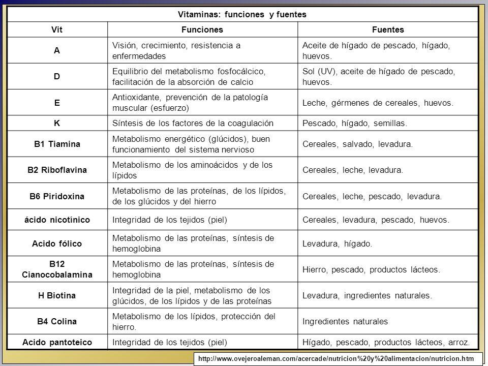 Vitaminas: funciones y fuentes VitFuncionesFuentes A Visión, crecimiento, resistencia a enfermedades Aceite de hígado de pescado, hígado, huevos. D Eq