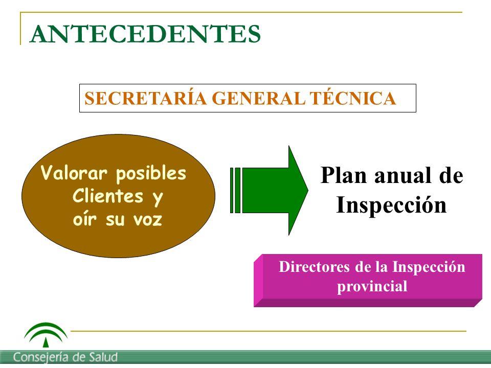 ANTECEDENTES Plan anual de Inspección SECRETARÍA GENERAL TÉCNICA Valorar posibles Clientes y oír su voz Directores de la Inspección provincial