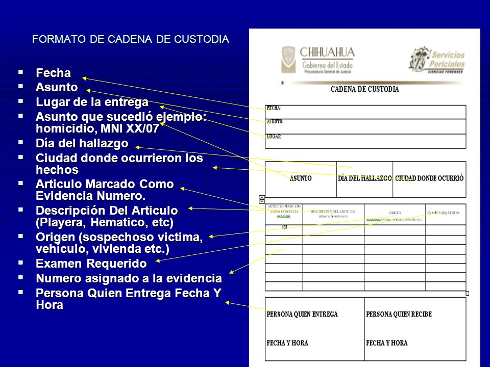 FORMATO DE CADENA DE CUSTODIA