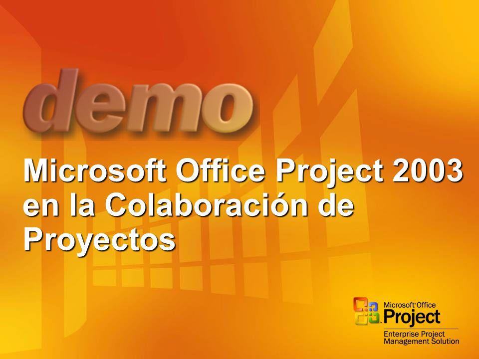 Microsoft Office Project 2003 en la Colaboración de Proyectos
