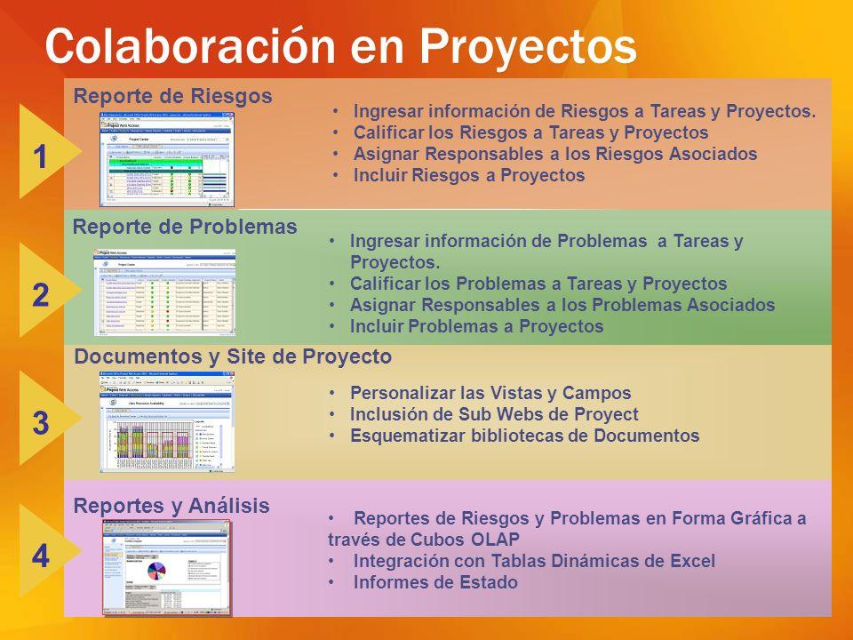 Reporte de Riesgos Ingresar información de Riesgos a Tareas y Proyectos. Calificar los Riesgos a Tareas y Proyectos Asignar Responsables a los Riesgos