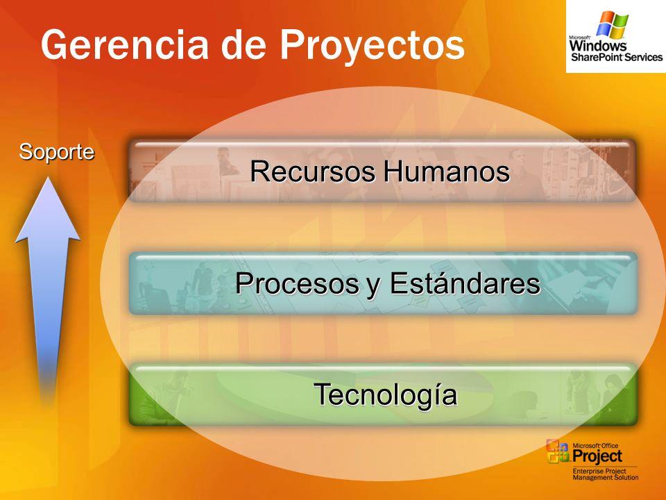 Tecnología Procesos y Estándares Recursos Humanos Gerencia de Proyectos Soporte Recursos Humanos Procesos y Estándares Tecnología