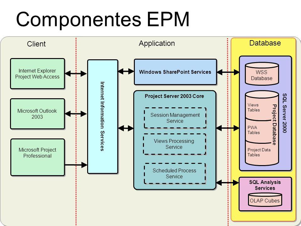 Componentes EPM Microsoft Project Professional Internet Explorer Project Web Access Internet Information Services Project Server 2003 Core Views Proce
