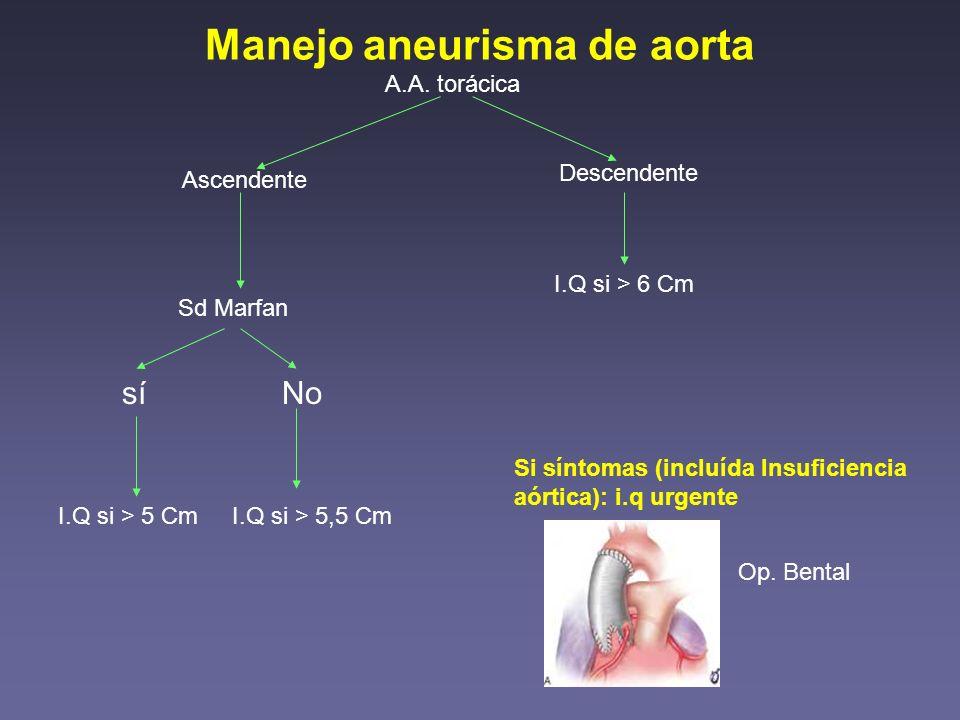 Manejo aneurisma de aorta A.A. torácica Ascendente Descendente Sd Marfan síNo I.Q si > 5 CmI.Q si > 5,5 Cm I.Q si > 6 Cm Si síntomas (incluída Insufic