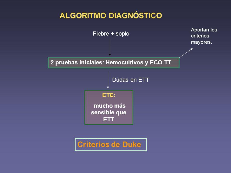 ALGORITMO DIAGNÓSTICO Fiebre + soplo 2 pruebas iniciales: Hemocultivos y ECO TT Aportan los criterios mayores. Dudas en ETT ETE: mucho más sensible qu