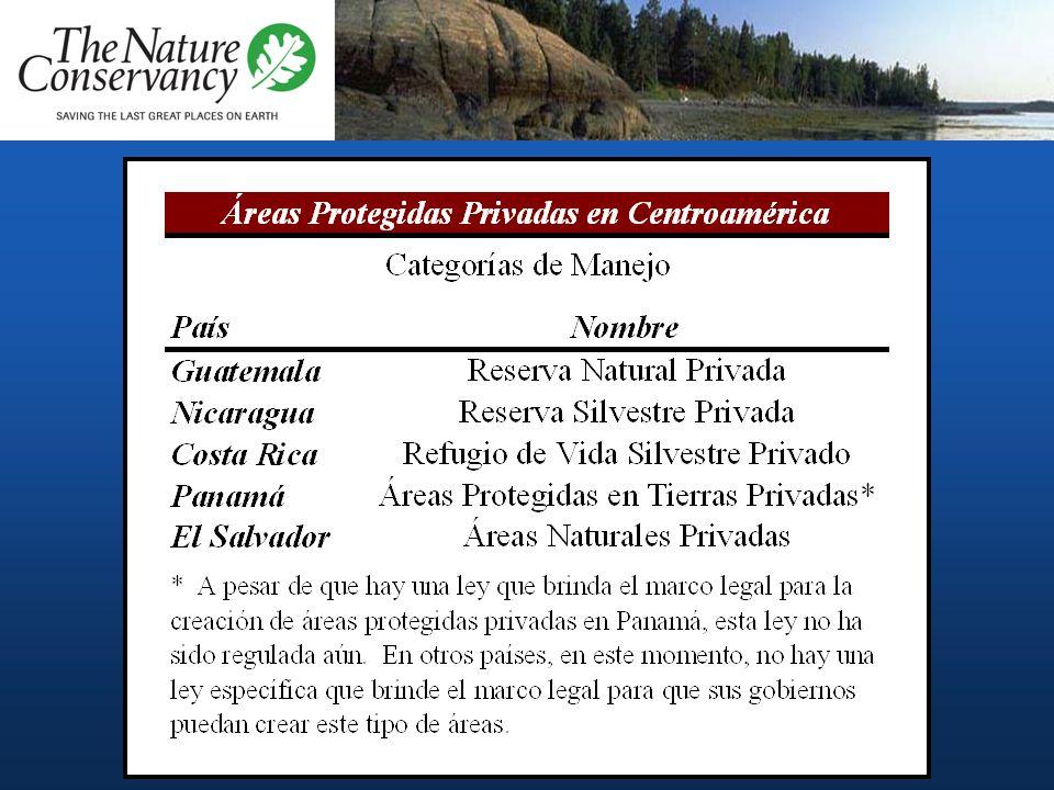 Herramientas Áreas protegidas privadas: oficialmente designadas por los Gobiernos Instrumentos privados: –Reservas privadas de hecho – Redes de Reserv