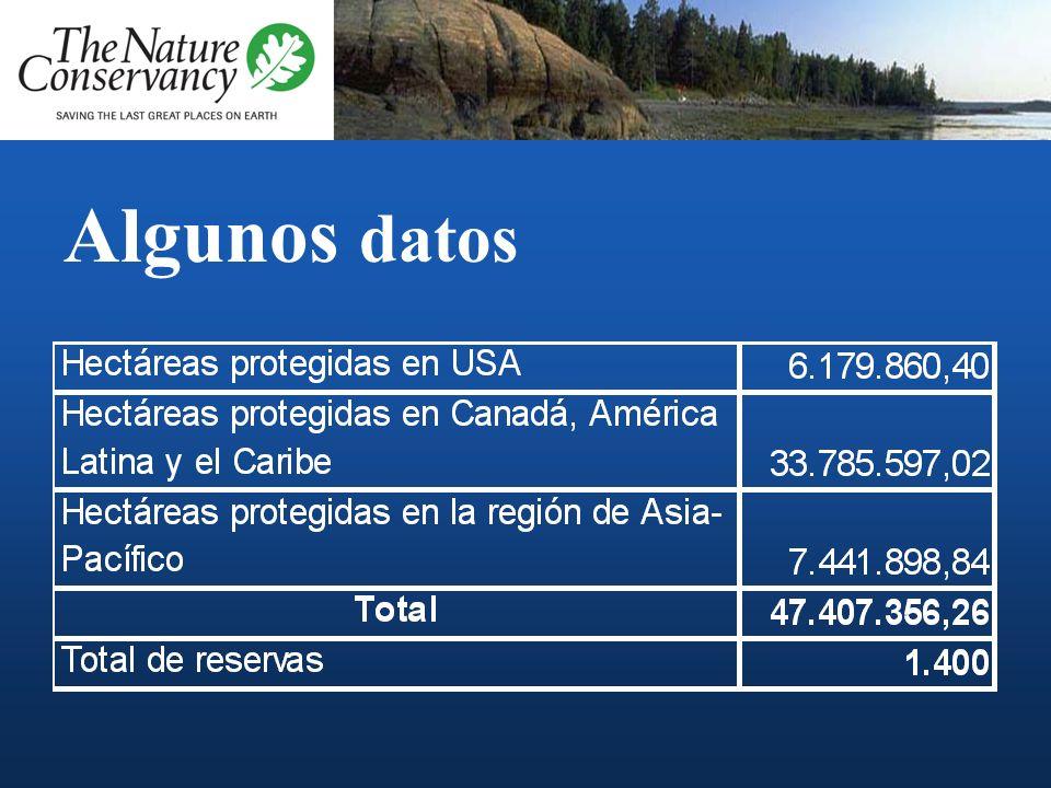 Algunos datos