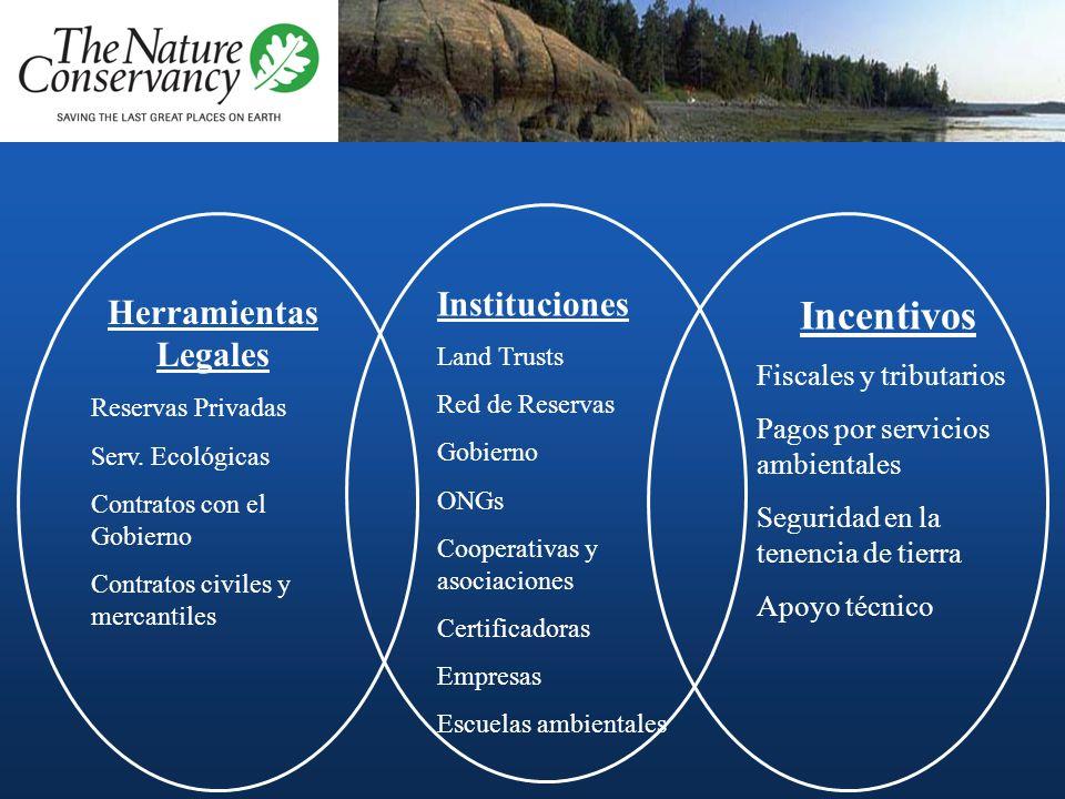 Instituciones Land Trusts Red de Reservas Gobierno ONGs Cooperativas y asociaciones Certificadoras Empresas Escuelas ambientales Herramientas Legales Reservas Privadas Serv.