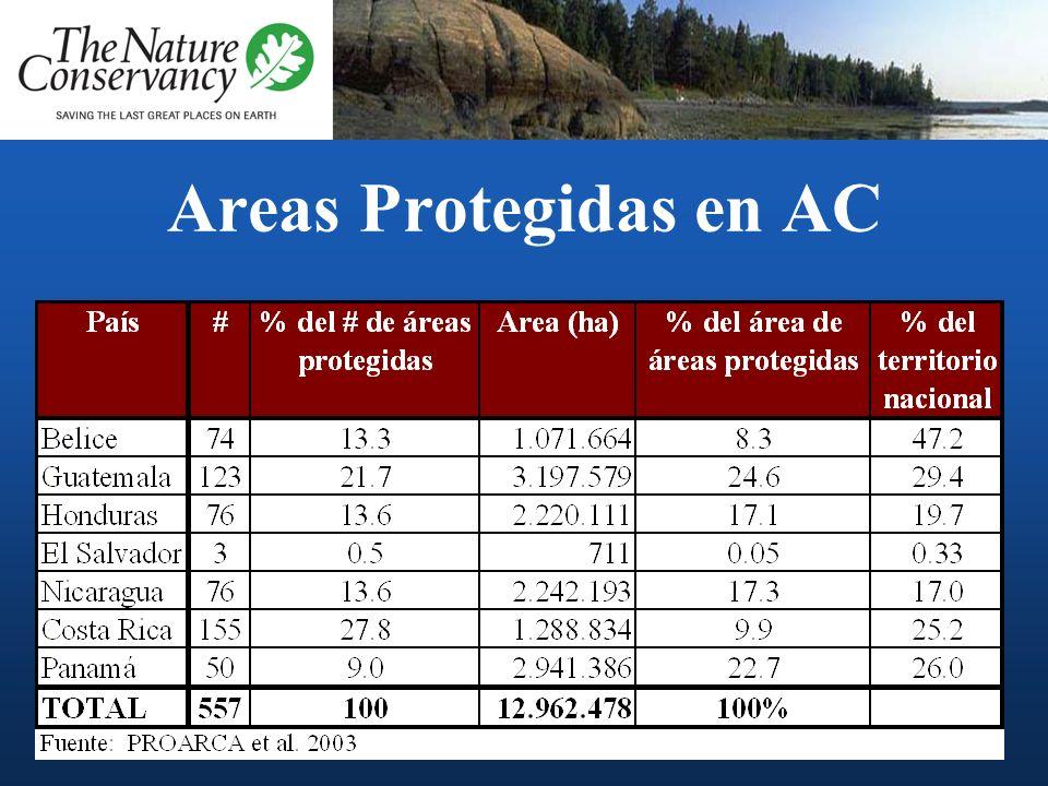 América Central 7 países 0. 5 millones km 2 8% de la biodiversidad mundial 20 zonas de vida, 22 ecoregiones y más de 350 paisajes 35 millones hab.