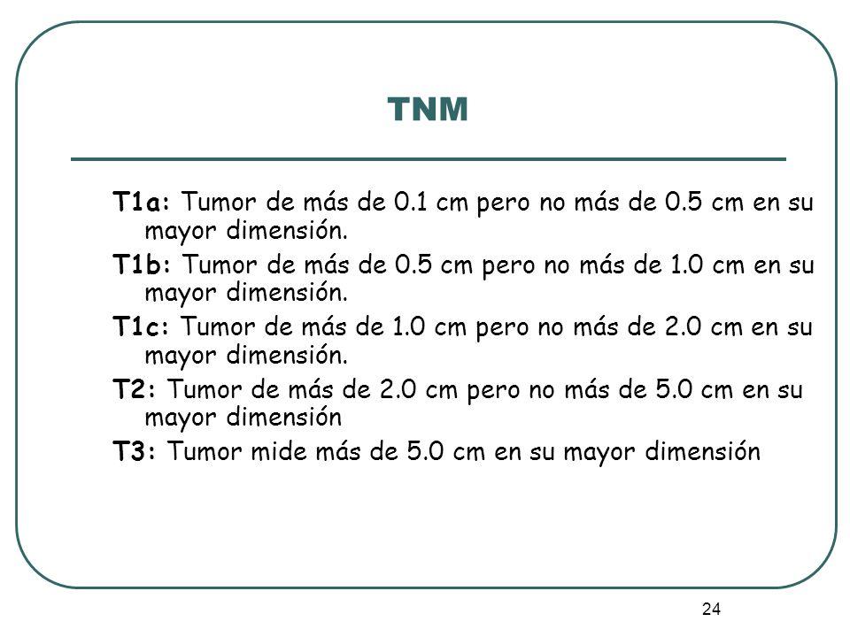 24 TNM T1a: Tumor de más de 0.1 cm pero no más de 0.5 cm en su mayor dimensión. T1b: Tumor de más de 0.5 cm pero no más de 1.0 cm en su mayor dimensió