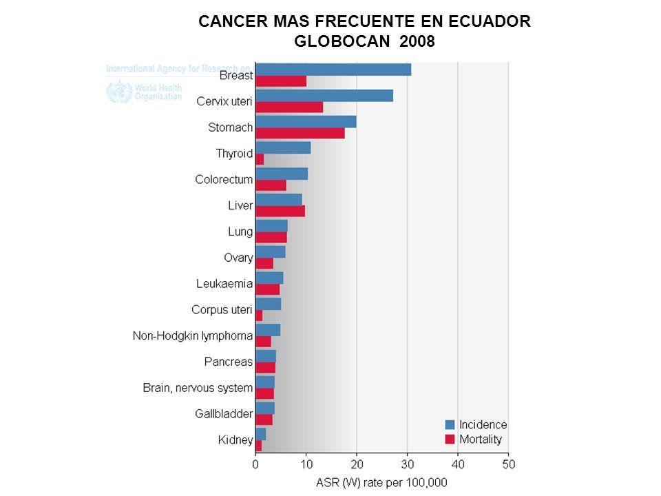 CANCER MAS FRECUENTE EN ECUADOR GLOBOCAN 2008