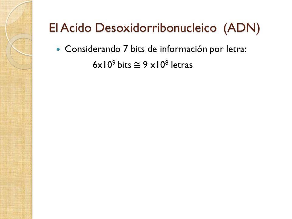 El Acido Desoxidorribonucleico (ADN) Considerando 7 bits de información por letra: 6x10 9 bits 9 x10 8 letras