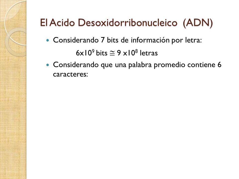 El Acido Desoxidorribonucleico (ADN) Considerando 7 bits de información por letra: 6x10 9 bits 9 x10 8 letras Considerando que una palabra promedio co