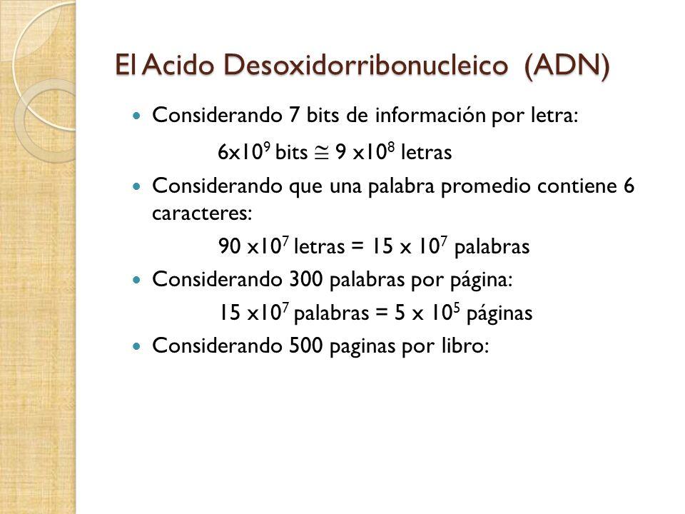 El Acido Desoxidorribonucleico (ADN) Considerando 7 bits de información por letra: 6x10 9 bits 9 x10 8 letras Considerando que una palabra promedio contiene 6 caracteres: 90 x10 7 letras = 15 x 10 7 palabras Considerando 300 palabras por página: 15 x10 7 palabras = 5 x 10 5 páginas Considerando 500 paginas por libro: